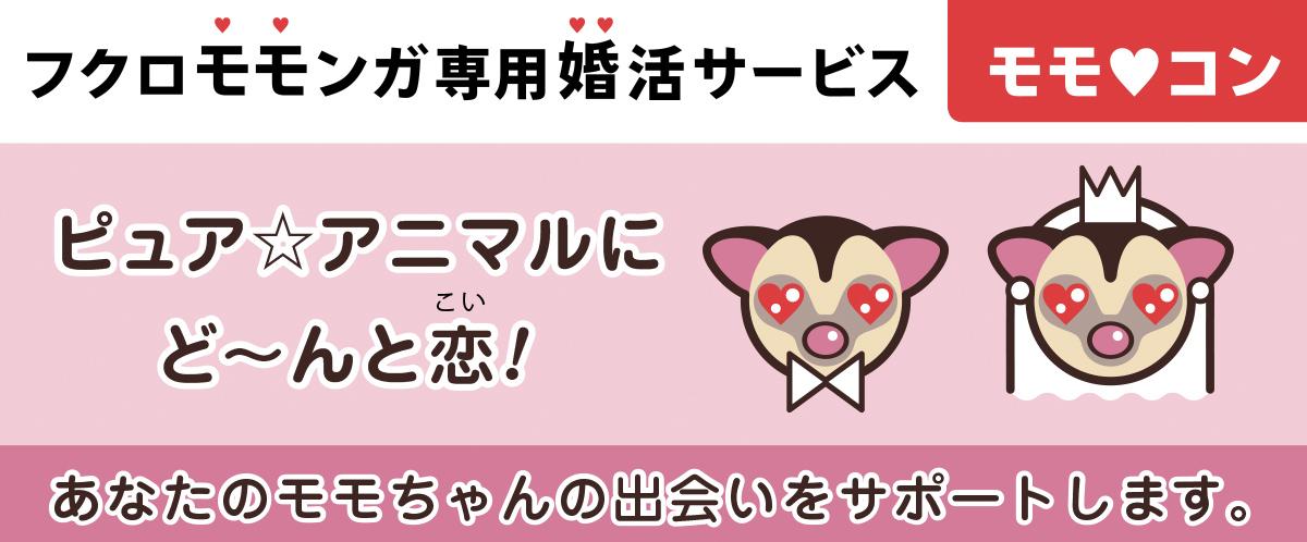 フクロモモンガ専用婚活サービスモモコン